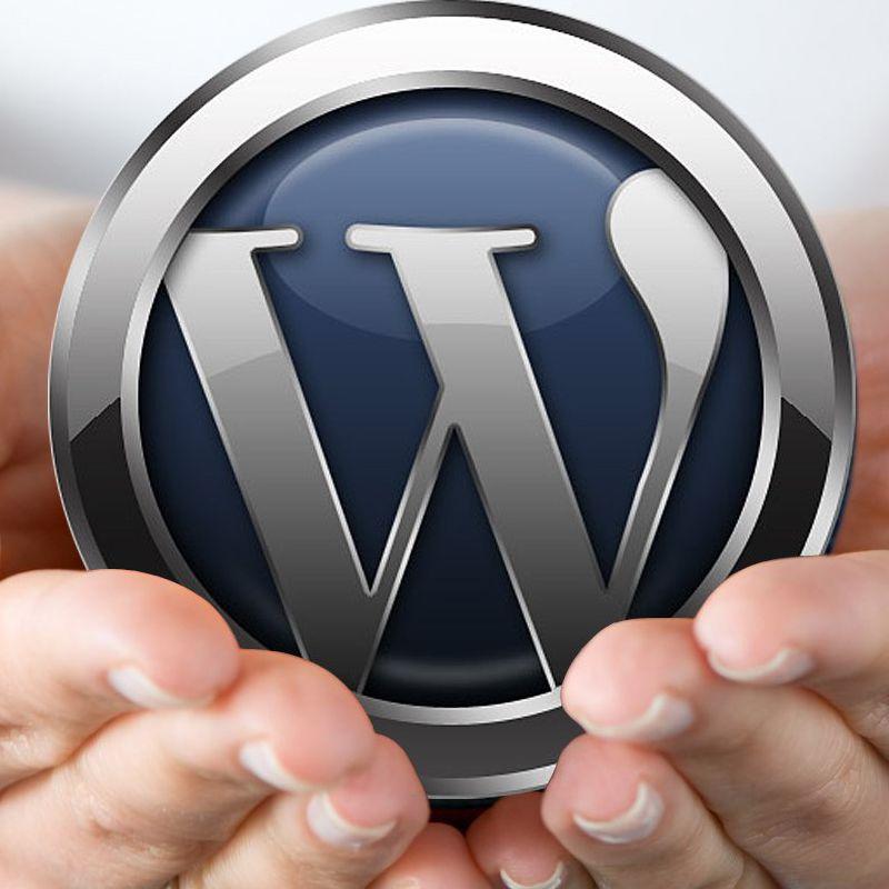 یک چهارم از وب سایت های دنیا با وردپرس طراحی می شوند!