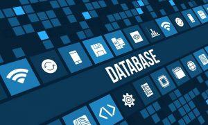 نقش پایگاه داده در وب سایت